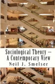 Sociological Theory: A Contemporary View: How to Read, Criticize and Do Theory