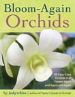 Bloom-Again Orchids