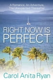 Right Now Is Perfect: A Romance, An Adventure, The Unexpected Thereafter