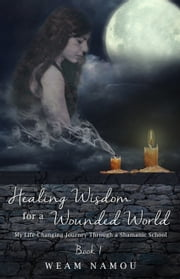 download Healing Wisdom for a Wounded World: My Life-Changing Journey Through a Shamanic School (Book 1) book