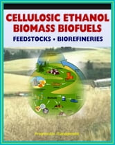 21st Century Cellulosic Ethanol, Biomass, and Biofuels: Wood Chips, Stalks, Switchgrass, Plant Products, Feedstocks, Cellulose Conversion Processes, Research Plans