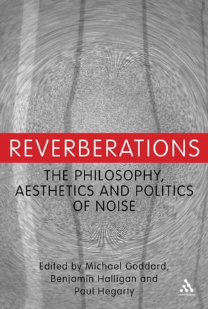 Reverberations The Philosophy,  Aesthetics and Politics of Noise