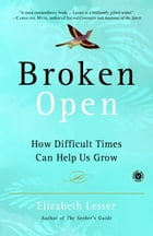 Broken Open Cover Image