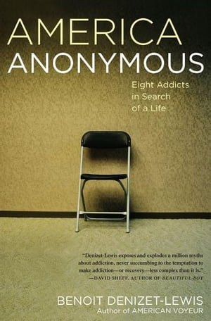 America Anonymous Eight Addicts in Search of a Life