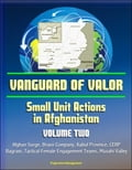 online magazine -  Vanguard of Valor: Small Unit Actions in Afghanistan (Volume Two) - Afghan Surge, Bravo Company, Kabul Province, CERP, Bagram, Tactical Female Engagement Teams, Musahi Valley