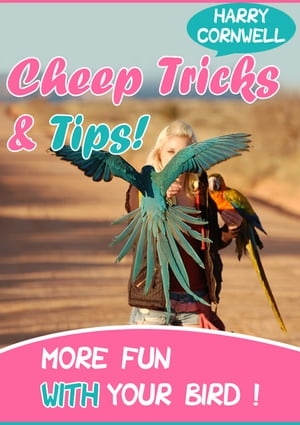 Cheap Tricks And Tips More Fun With Your Birds