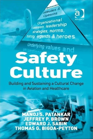 Safety Culture Building and Sustaining a Cultural Change in Aviation and Healthcare