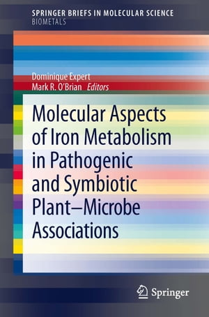 Molecular Aspects of Iron Metabolism in Pathogenic and Symbiotic Plant-Microbe Associations