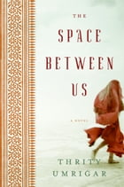 The Space Between Us Cover Image