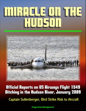 Miracle on the Hudson: Official Reports on US Airways Flight 1549 Ditching in the Hudson River,  January 2009,  Captain Sullenberger,  Bird Strike Risk t