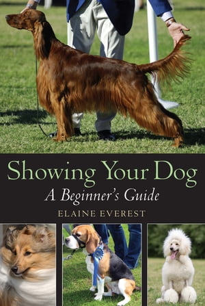 Showing Your Dog A Beginner's Guide