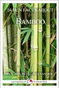 online magazine -  14 Fun Facts About Bamboo: A 15-Minute Book