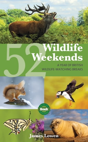 52 Wildlife Weekends: A Year of British Wildlife-Watching Breaks