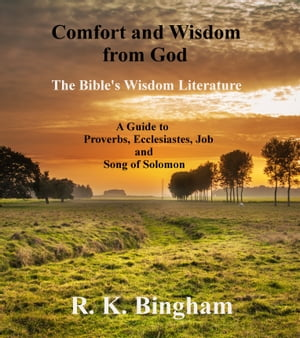 Comfort and Wisdom from God The Bible's Wisdom Literature