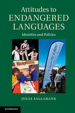 Attitudes to Endangered Languages Identities and Policies