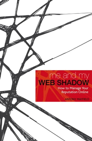 Me and My Web Shadow How to Manage Your Reputation Online