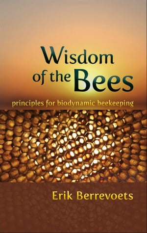 Wisdom of the Bees