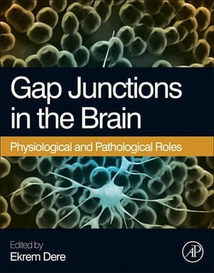 Gap Junctions in the Brain Physiological and Pathological Roles