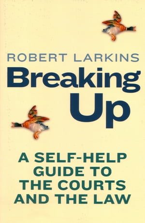 Breaking Up A Self-Help Guide To The Courts And The Law