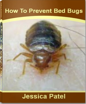 How To Prevent Bed Bugs A Definitive Guide To Whsmith