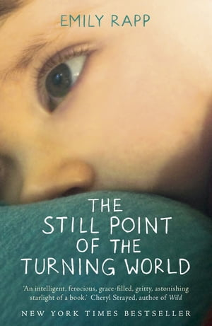 The Still Point of the Turning World A Mother's Story