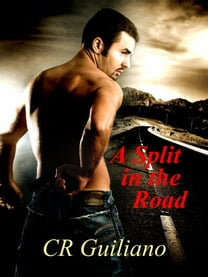 A Split in the Road, Book 3 of Vampire Wars