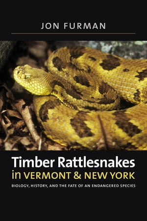 Timber Rattlesnakes in Vermont & New York Biology,  History,  and the Fate of an Endangered Species