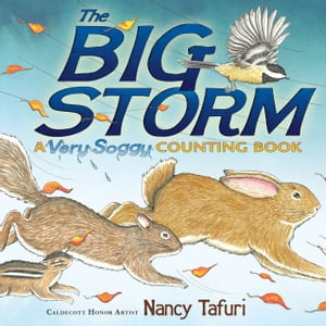 The Big Storm A Very Soggy Counting Book (with audio recording)