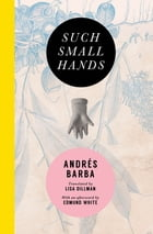 Such Small Hands Cover Image