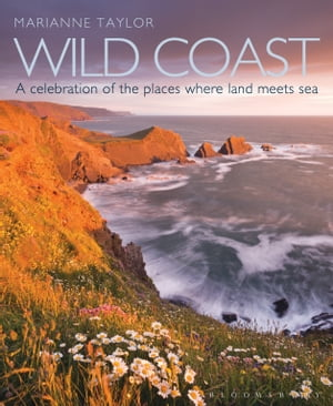 Wild Coast An exploration of the places where land meets sea