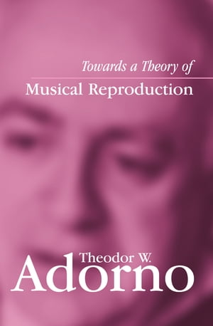 Towards a Theory of Musical Reproduction Notes,  a Draft and Two Schemata
