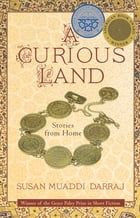 A Curious Land Cover Image