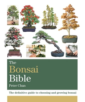 The Bonsai Bible The definitive guide to choosing and growing bonsai