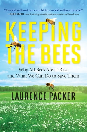 Keeping The Bees Why All Bees Are at Risk and What We Can Do to Save Them