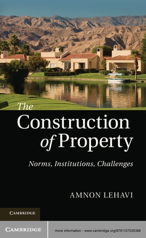 The Construction of Property Norms,  Institutions,  Challenges