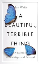 A Beautiful, Terrible Thing Cover Image