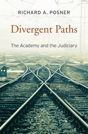 Divergent Paths The Academy and the Judiciary