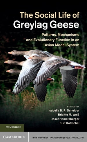 The Social Life of Greylag Geese Patterns,  Mechanisms and Evolutionary Function in an Avian Model System