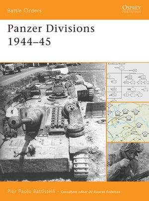 Panzer Divisions 1944?45