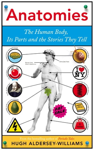 Anatomies The Human Body,  Its Parts and The Stories They Tell
