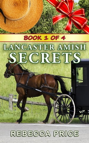 Lancaster Amish Secrets The Lancaster Amish Juggler Series,  #1