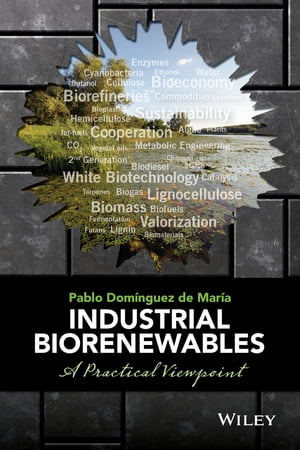 Industrial Biorenewables A Practical Viewpoint