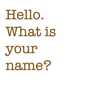 What's Your Name? book 1 Series First Words