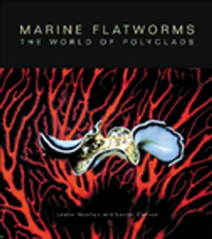 Marine Flatworms The World of Polyclads