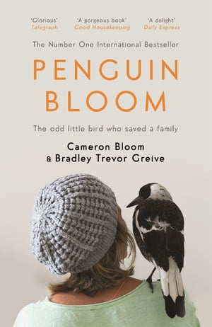 Penguin Bloom The Odd Little Bird Who Saved a Family