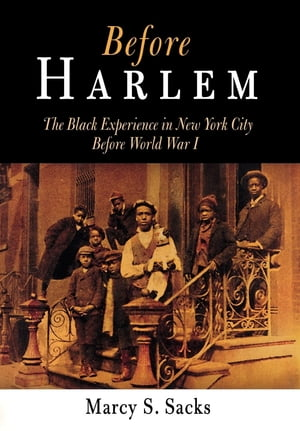 Before Harlem The Black Experience in New York City Before World War I