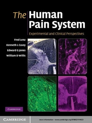 The Human Pain System Experimental and Clinical Perspectives