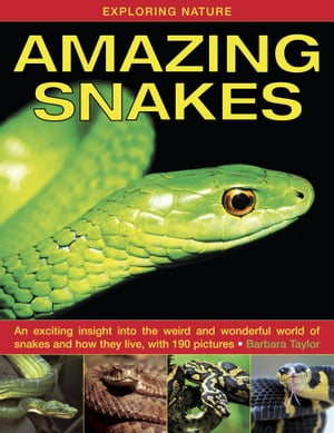 Amazing Snakes An Exciting Insight Into the Weird and Wonderful World of Snakes and How They Live,  With 190 Pictures