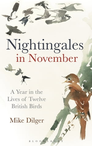 Nightingales in November A Year in the Lives of Twelve British Birds
