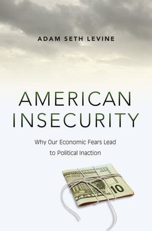 American Insecurity Why Our Economic Fears Lead to Political Inaction